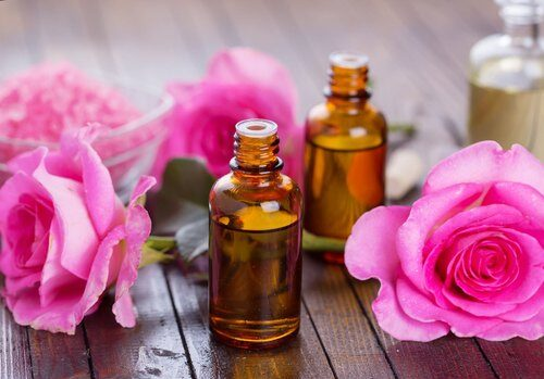 Rose Oil Vs Rosehip Oil: Differences, Benefits, Usage, and Best Brands